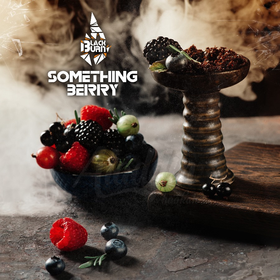 Табак для кальяна Black Burn 100гр Something Berry - что-то ягодное
